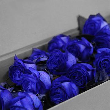 成都市本地的21朵蓝玫瑰卖多少钱