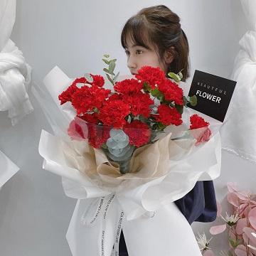 幸福常伴-19朵红色康乃馨