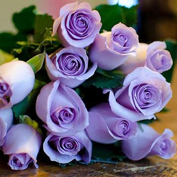 广州是本地订花送花选哪个网站?