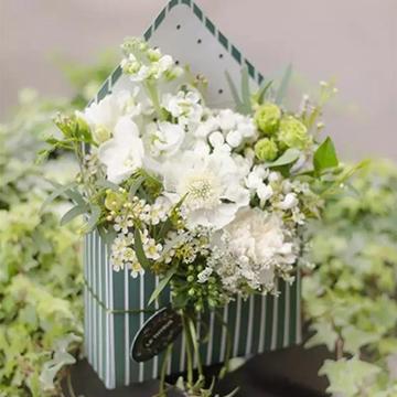 写一封情书送一束鲜花让你表白不在被拒绝