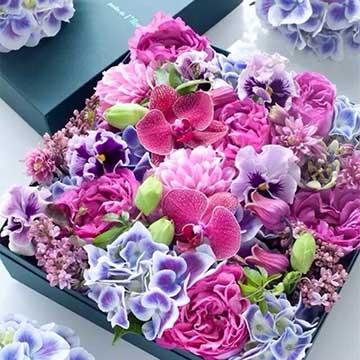 蝴蝶兰花盒