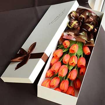 红色郁金香花盒