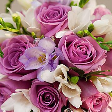 戴安娜粉玫瑰花