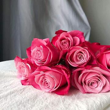 成都成华区情人节的玫瑰花一般钱多少一束