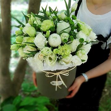绿玫瑰抱抱桶花