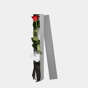 一支红玫瑰花