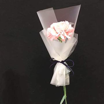 国内各大花店康乃馨的价格在多少钱?