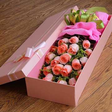 19枝粉玫瑰花