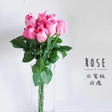 水蜜桃玫瑰图片