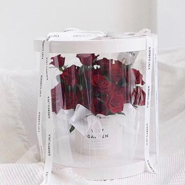 红玫瑰图片