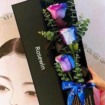 厄瓜多尔七彩玫瑰