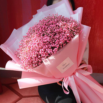粉色满天星