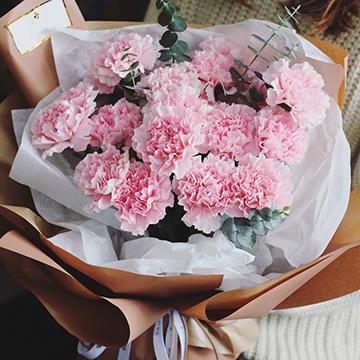 康乃馨图片