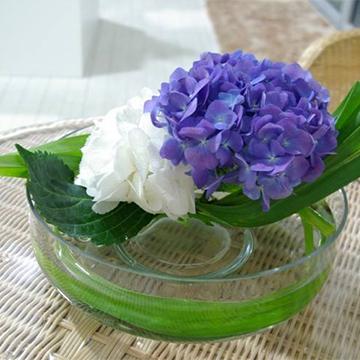 绣球鲜切花
