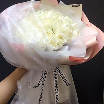 33朵白玫瑰