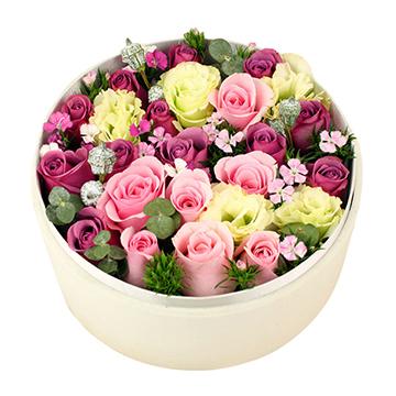 6朵粉玫瑰