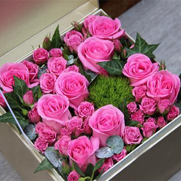 粉蜜桃玫瑰
