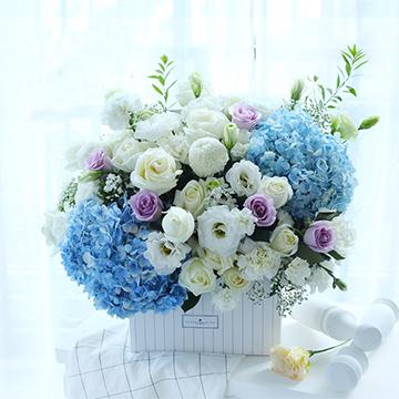 11朵白玫瑰