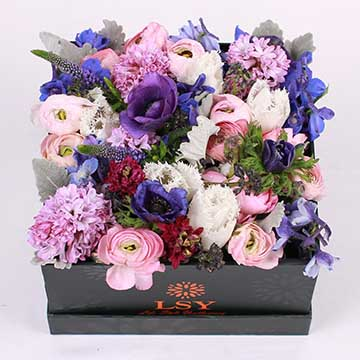 风信子花盒