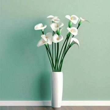 实用的6大家庭养花的小诀窍