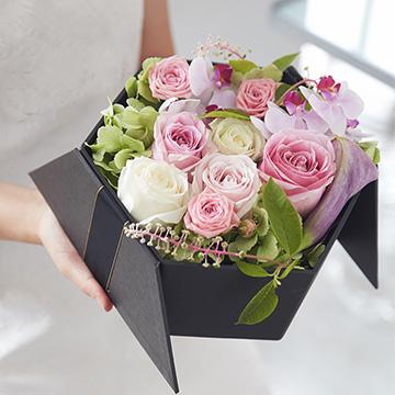 9朵玫瑰花