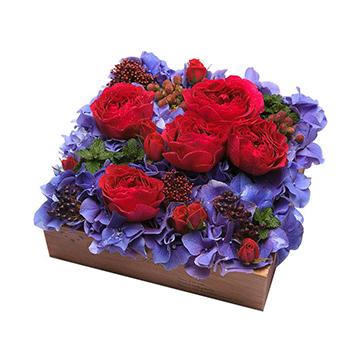 6朵红玫瑰