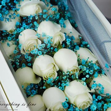 19朵白玫瑰花