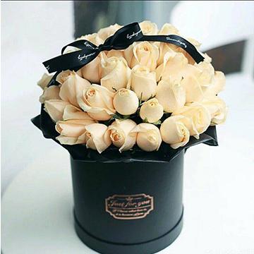 33朵香槟玫瑰
