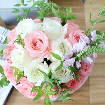 16朵玫瑰花