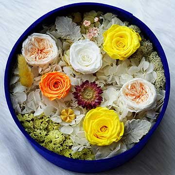 6朵混色玫瑰
