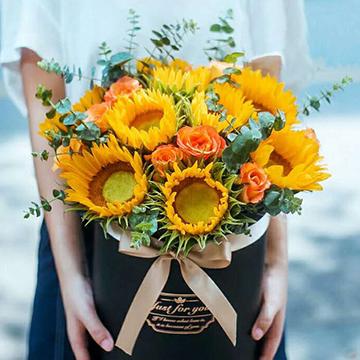 11朵向日葵