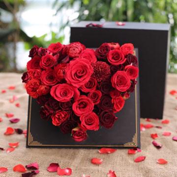 心形红玫瑰花