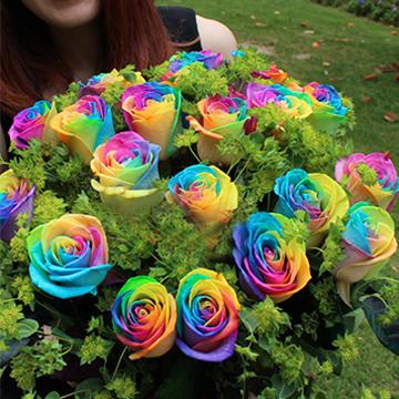 21朵七彩玫瑰