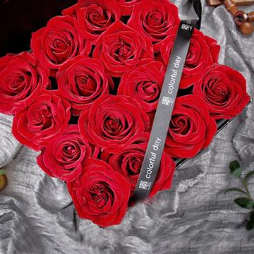 16朵红玫瑰