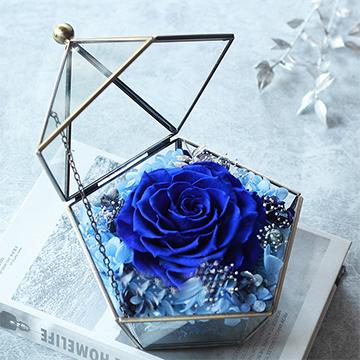 一朵蓝色妖姬