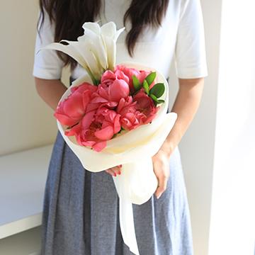 粉色马蹄莲花