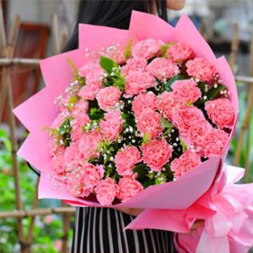 26朵康乃馨