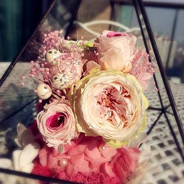 奥斯丁玫瑰花