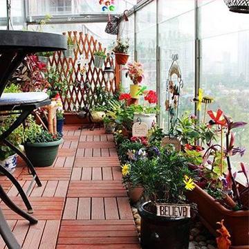 阳台养花知识