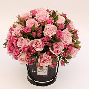 66朵粉玫瑰