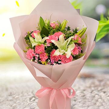 粉色康乃馨