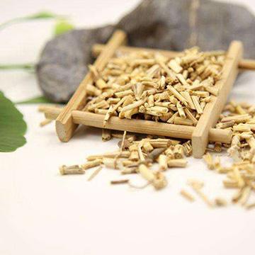 白茅根的养殖方法