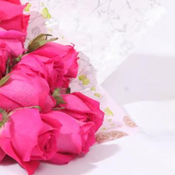 水蜜桃粉玫瑰