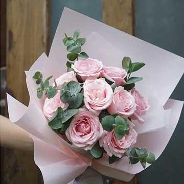 粉雪山玫瑰的养殖方法
