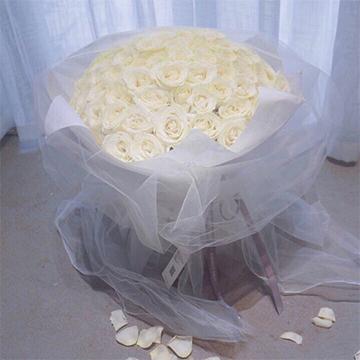 99朵白玫瑰