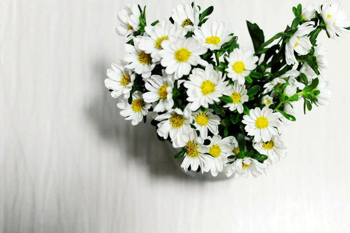 下半年生日的应该送什么花?四平异地鲜花预订app哪个好