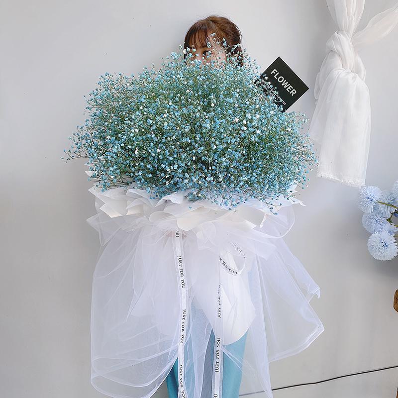 *好的我们-蓝色满天星熊抱花束 女朋友本命年可以送哪些礼物?平凉同城鲜花预订去哪个app