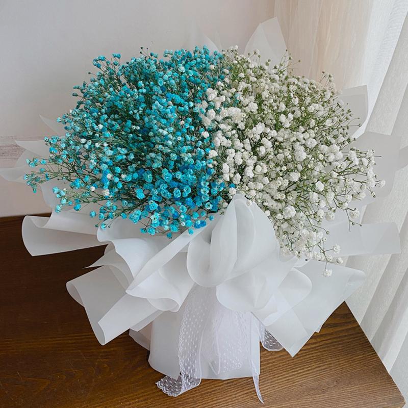蓝色+白色拼色满天星花束 恩施同城鲜花速递如何呢?代表勇气和坚强的植物有哪些
