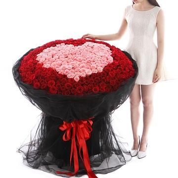 520,我爱你-520朵混色玫瑰