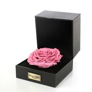 天秤座守护花-巨型永生花礼盒